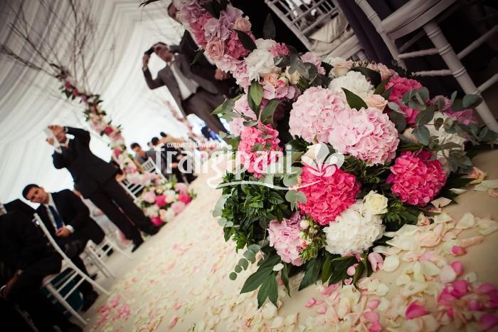 Frangipani Are Oferte Pentru Aranjamente Si Decoratiuni Florale